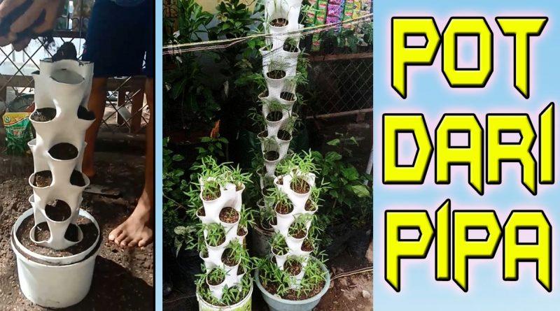 Pot dari pipa paralon
